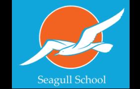 16.Seagull